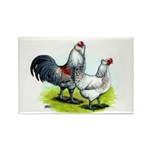 Ameraucana Rooster and Hen Rectangle Magnet (10 pa