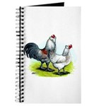 Ameraucana Rooster and Hen Journal