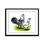 Ameraucana Rooster and Hen Framed Panel Print