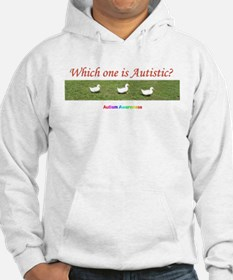 Which one is autistic? Hoodie