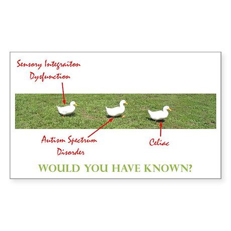 Disability Ducks Rectangle Sticker