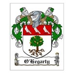 O'Hegarty Family Crest Small Poster