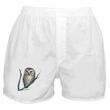 little owl Boxer Shorts