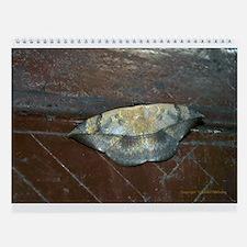 Mulu Wall Calendar