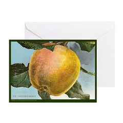 White Winter Pearmain Greeting Cards (Pk of 10)