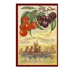Heirloom Cherries Postcards (Package of 8)