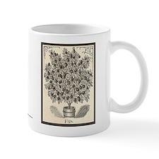 Fig Etching Mug