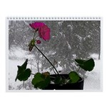 WRW Colors Seasons Wall Calendar