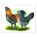 Easter Egg Chickens Small Poster