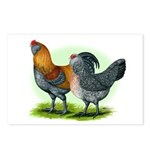 Easter Egg Chickens Postcards (Package of 8)
