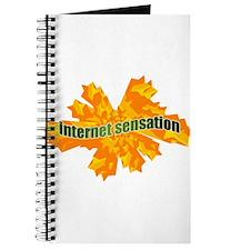 Internet Sensation Journal