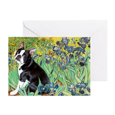 Irises & Boston Terrier Greeting Cards (Pk of 10)