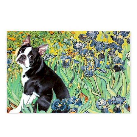 Irises & Boston Terrier Postcards (Package of 8)