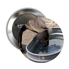 Horse at the Water Button
