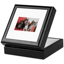 Turkish Angora Keepsake Box
