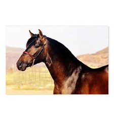 Andalusian Postcards (Package of 8)