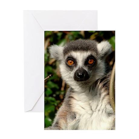 Ringtail Lemur Greetings Card