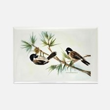 Two Chickadees Rectangle Magnet