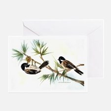 Two Chickadees Thank You Card
