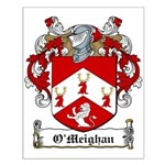 O'Meighan Family Crest Small Poster