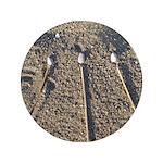 Beach Awen 3.5