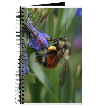 bee's knees Journal