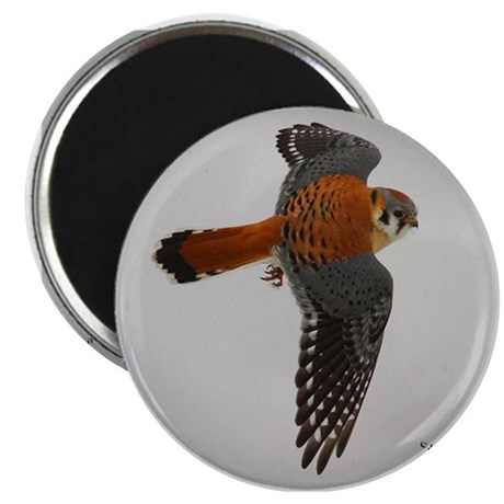 "Kestrel 2.25"" Magnet (100 pack)"