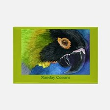 NANDAY CONURE Rectangle Magnet
