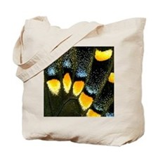 Papilio Polyxenes Butterfly Tote Bag