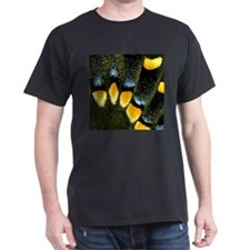 Papilio Polyxenes Butterfly T-Shirt