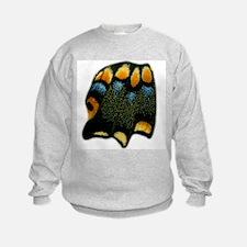 Papilio Polyxenes Butterfly Sweatshirt