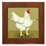 Cornish/Rock Cross Hen Framed Tile
