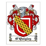 O'Quigley Family Crest Small Poster