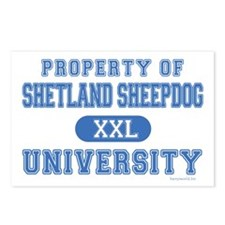 Sheltie University Postcards (Package of 8)