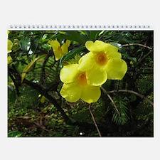 Paradise Wall Calendar