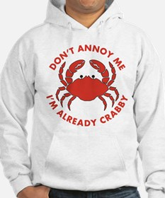 Dont Annoy Me Jumper Hoody