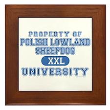 P.L.S. University Framed Tile