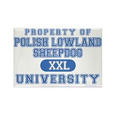 P.L.S. University Rectangle Magnet (10 pack)