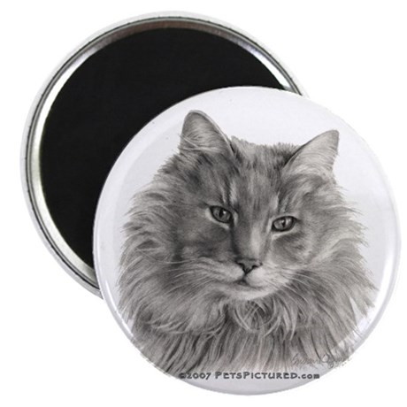 TG, Long-Haired Gray Cat Magnet