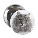 TG, Long-Haired Gray Cat 2.25