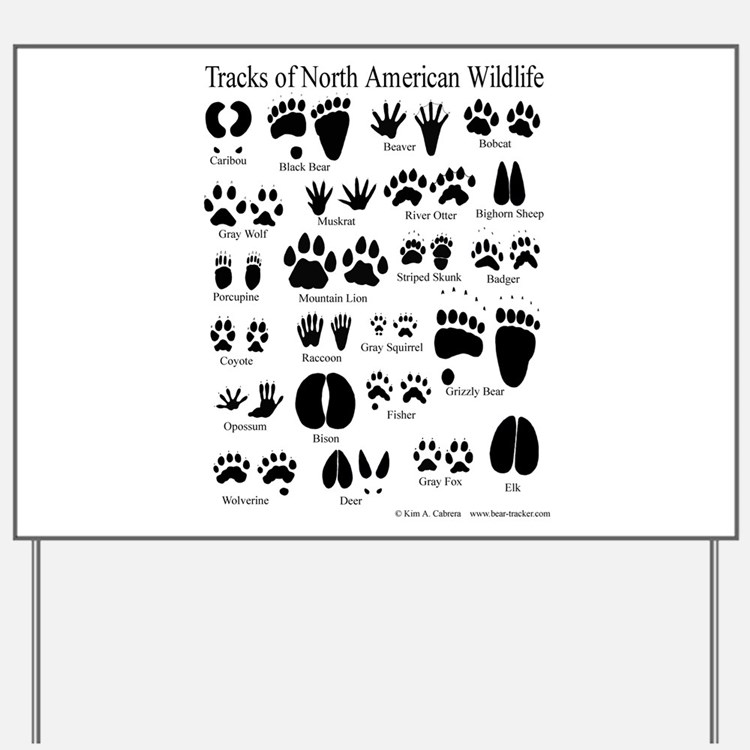 Animal Tracks Guide Yard Sign