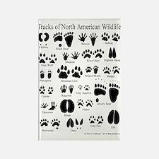 Animal Tracks Guide Rectangle Magnet