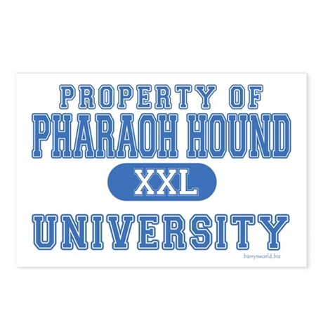 Pharaoh Hound U. Postcards (Package of 8)