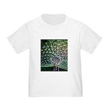 Zebra-Peacock T