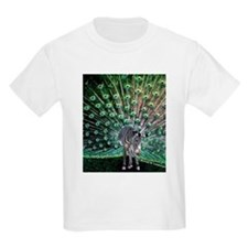 Zebra/Peacock Kids T-Shirt