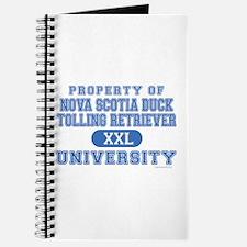 N.S.D.T.R. University Journal