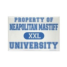 Neapolitan Mastiff U. Rectangle Magnet (100 pack)
