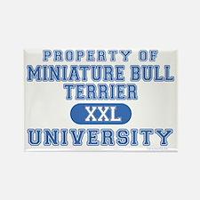 M.B.T. University Rectangle Magnet (100 pack)