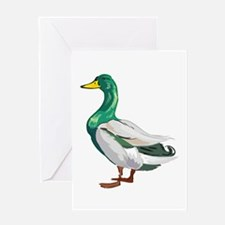 DUCK (2) Greeting Card