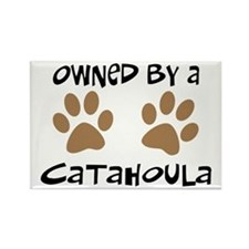 Owned By A Catahoula Rectangle Magnet